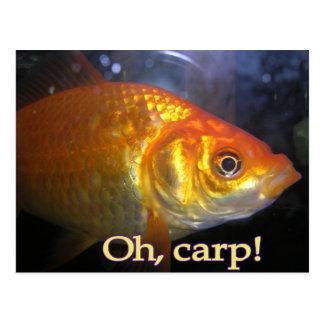 Oh, carp! postcard