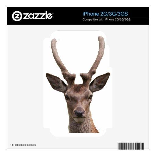 Oh ciervos iPhone 3 calcomanías
