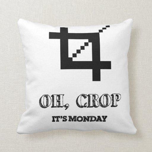 Oh Crop , It's Monday Pillow