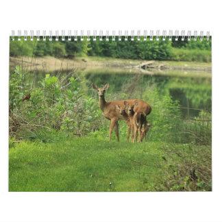 oh deer calendar