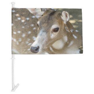 Oh Deer! Car Flag