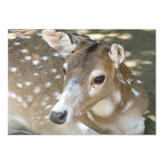 "Oh Deer Invitation 5"" X 7"" Invitation Card"