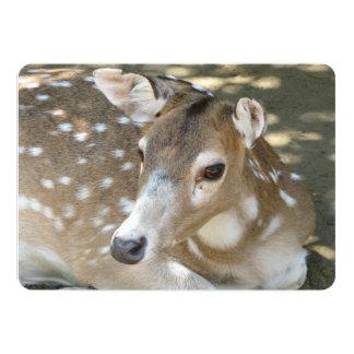 "Oh Deer! 5"" X 7"" Invitation Card"