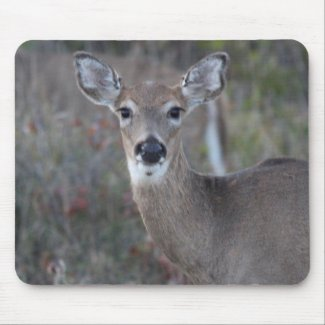 Oh Deer Mouse Pad
