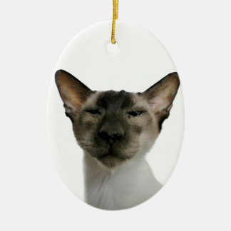 Oh Handsome Me Double-Sided Oval Ceramic Christmas Ornament