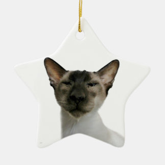 Oh Handsome Me Double-Sided Star Ceramic Christmas Ornament