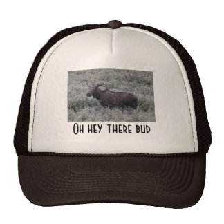 Oh Hey There Bud Trucker Hat