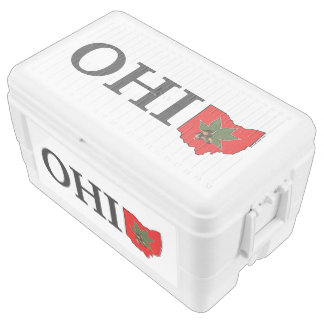 OH IO Typographic Ohio Vintage Red Buckeye Nut Cooler