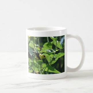 Oh, it is just our paparazzi again.  Goldfinch Coffee Mug