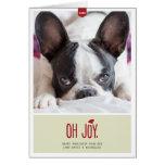 Oh Joy   Folded Holiday Pet Photo Card