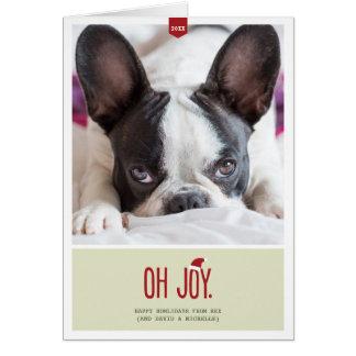 Oh Joy | Folded Holiday Pet Photo Card