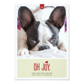 Oh Joy | Holiday Photo Card Announcements