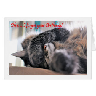 Oh no, I forgot your Birthday! Cat Happy beltaed Greeting Card