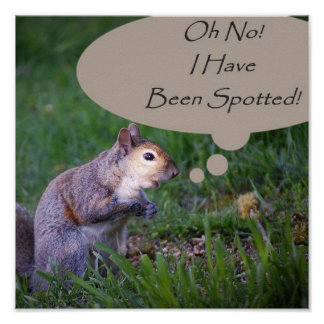 Oh No! I Have Been Spotted! Squirrel Print