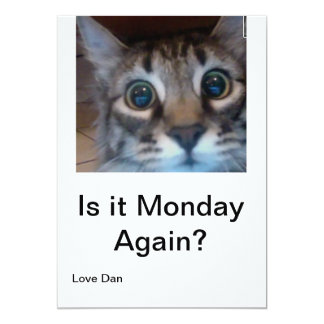 Oh no, its Monday again? Funny card with cute cat!
