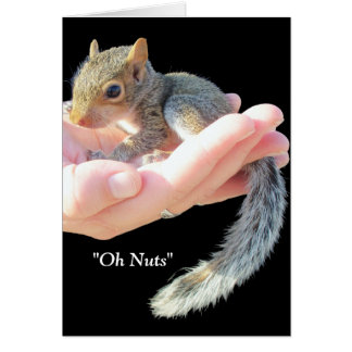 Oh Nuts / Get Well Soon Card
