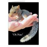 Oh Nuts / Get Well Soon Greeting Card