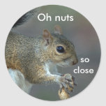 Oh Nuts Round Sticker