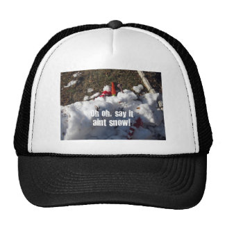 ¡Oh oh, dígalo nieve del aint! Gorras De Camionero