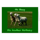 ¡Oh ovejas!  Otro cumpleaños Tarjeta De Felicitación