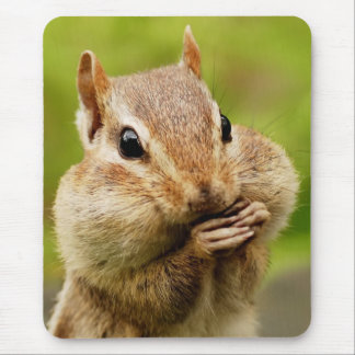 Oh So Cheeky Chipmunk Mouse Pad