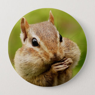 Oh So Cheeky Chipmunk Round Button