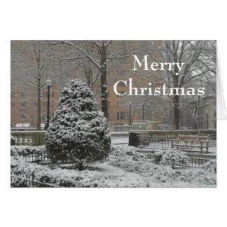 Oh tarjeta de felicitación del árbol de navidad