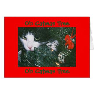 Oh tarjeta del árbol de Catmas