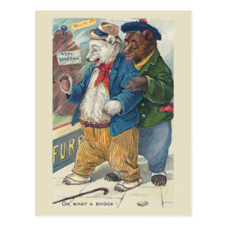 """""""Oh, What a Shock"""" Vintage Bears Postcard"""