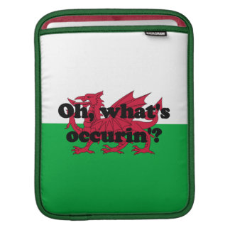 'Oh, what's occurin'?' Sleeve For iPads