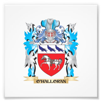 O'Halloran Coat of Arms - Family Crest Art Photo
