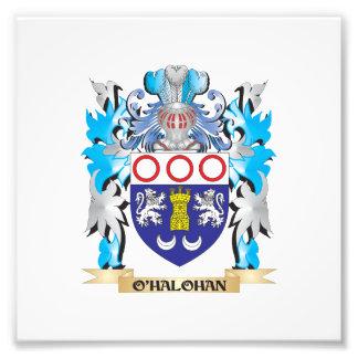 O'Halohan Coat of Arms - Family Crest Art Photo