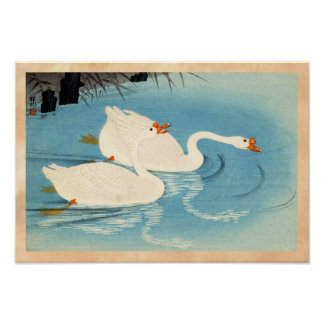 Ohara Shoson Two Sweeming Geese japanese art Poster