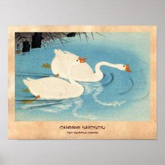 Ohara Shoson Two Sweeming Geese japanese art Print