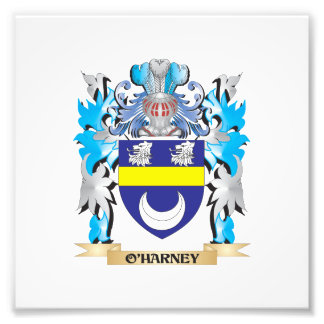 O'Harney Coat of Arms - Family Crest Photo Art