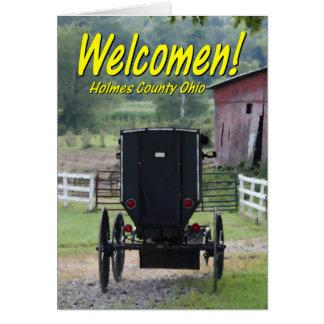 OHCA101.Amish Buggie - Holmes Co OH. Card