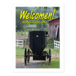 OHCA101.Amish Buggie - Holmes Co OH. Post Cards