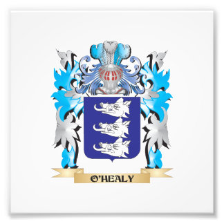 O'Healy Coat of Arms - Family Crest Photograph
