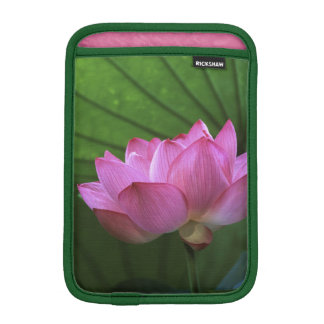 Ohga Lotus, Sankei-en Garden, Yokohama, Japan iPad Mini Sleeves