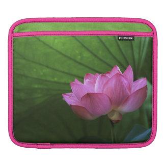 Ohga Lotus, Sankei-en Garden, Yokohama, Japan iPad Sleeves
