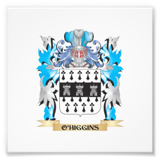 O'Higgins Coat of Arms - Family Crest Photo