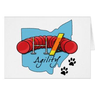 Ohio Agility Card