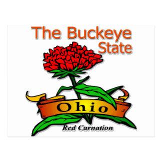 Ohio Buckeye State Red Carnation Post Card
