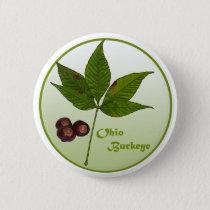 Ohio Buckeye Tree Button