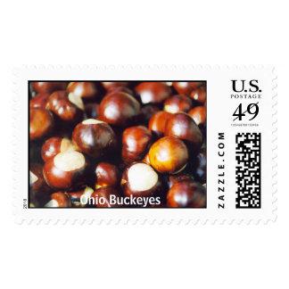 Ohio Buckeyes Postage Stamps