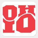 Ohio Calcomania Cuadradas Personalizada