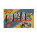 Ohio (Capital del Estado/flor) - escena grande de Postal