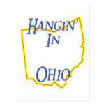Ohio - Hangin' Post Card