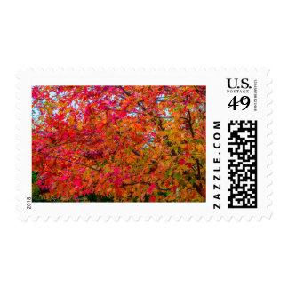 Ohio Leaves in the Fall Postage Stamp
