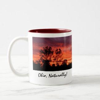 Ohio, Naturally! Mug